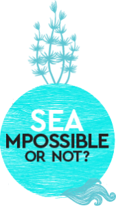 seampossible