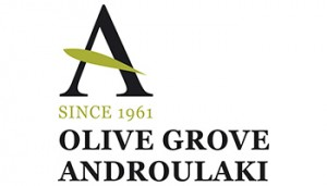 2_ENGLISH-LOGO-ANDROULAKIS