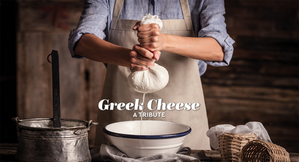 Cheese_Preparation